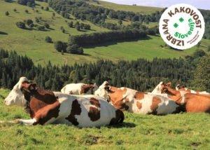 Odkup slovenskega mleka po uvedbi znaka »Izbrana kakovost« narašča