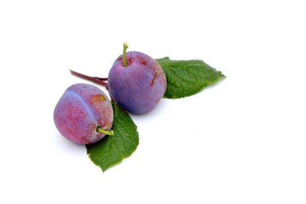 Prekmurski slivovi cmoki – recept