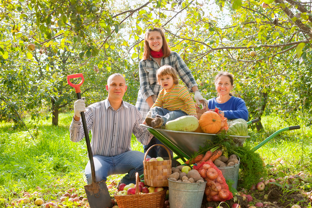 Ohranimo naše podeželje, naša delovna mesta ‒ izberimo našo super hrano