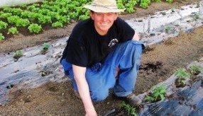 Prednosti lokalno pridelane hrane