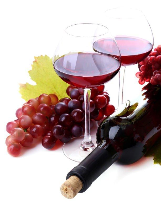 Slovenska vina so odlična!