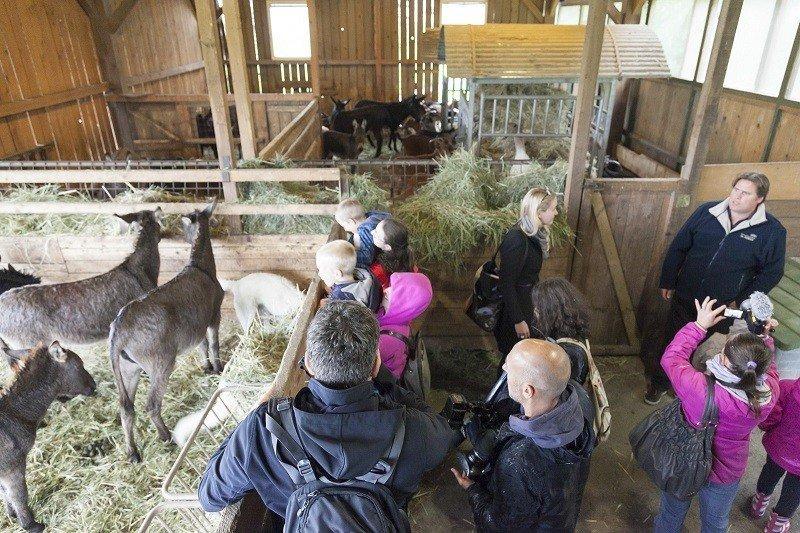 Dan odprtih vrat na ekološki kmetiji Trnulja