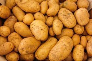 Zakaj izbrati prav slovenski krompir?