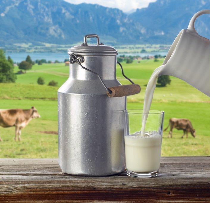 Mleko kantica