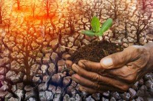 Napovedane podnebne spremembe že kažejo posledice