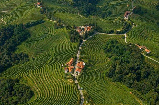 Slovenija postaja vse bolj naša dežela