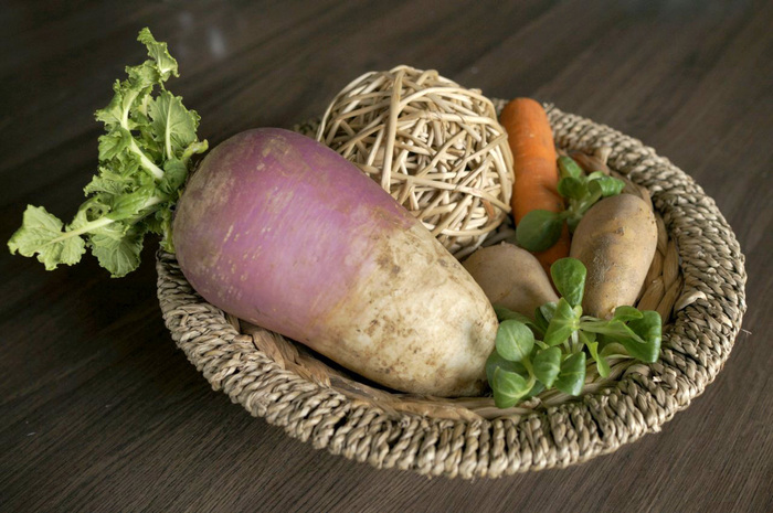 Ekološka kmetija Studen: »Naša roba je živa!«
