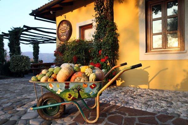 Slovenija, zakladnica turističnih kmetij