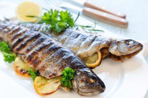 Slovenska akvakultura in sladkovodne ribe