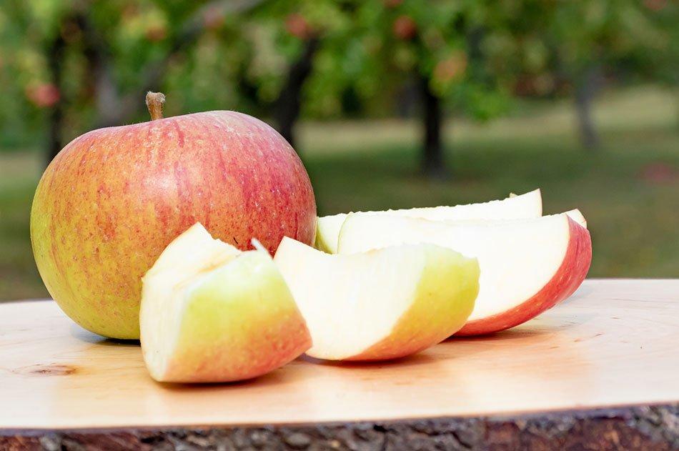 Vrste jabolk, slovenska jabolka