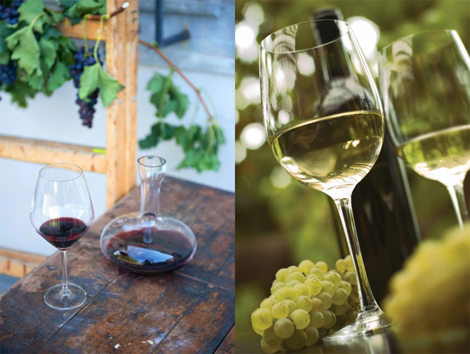 Rdeče in belo vino