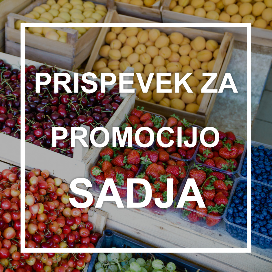 Obvezni prispevek v sektorju sadja