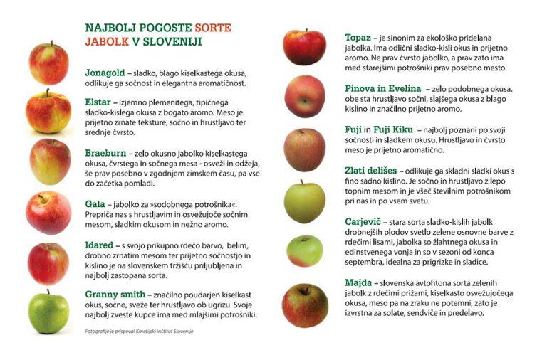 Sorte slovenskih jabolk