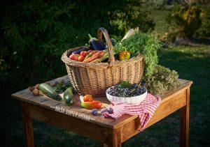 Nakup hrane na kmetijah ni prepovedan
