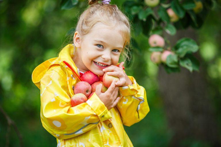 Sezonsko lokalno sadje je vedno tu za nas