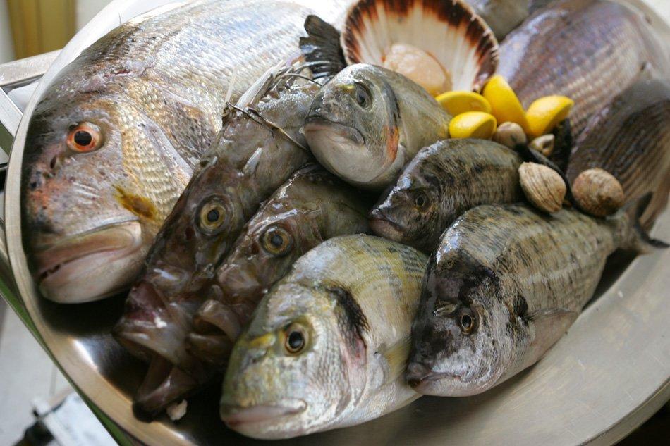 Slovenske ribe za slovenske potrošnike