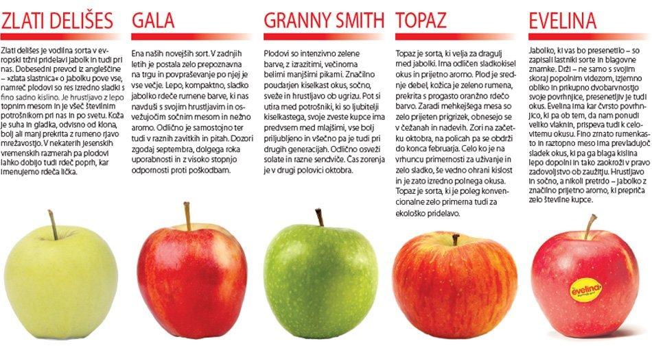 Sorte in opis jabolk