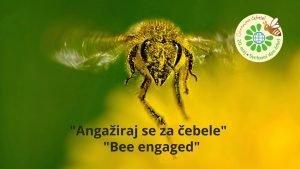 Svetovni dan čebel - Angažiraj se za čebele - Bee engaged