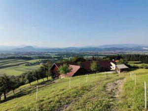 Slovenske kmetije