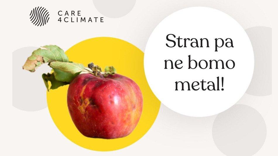 Jabolko s posušenim listom