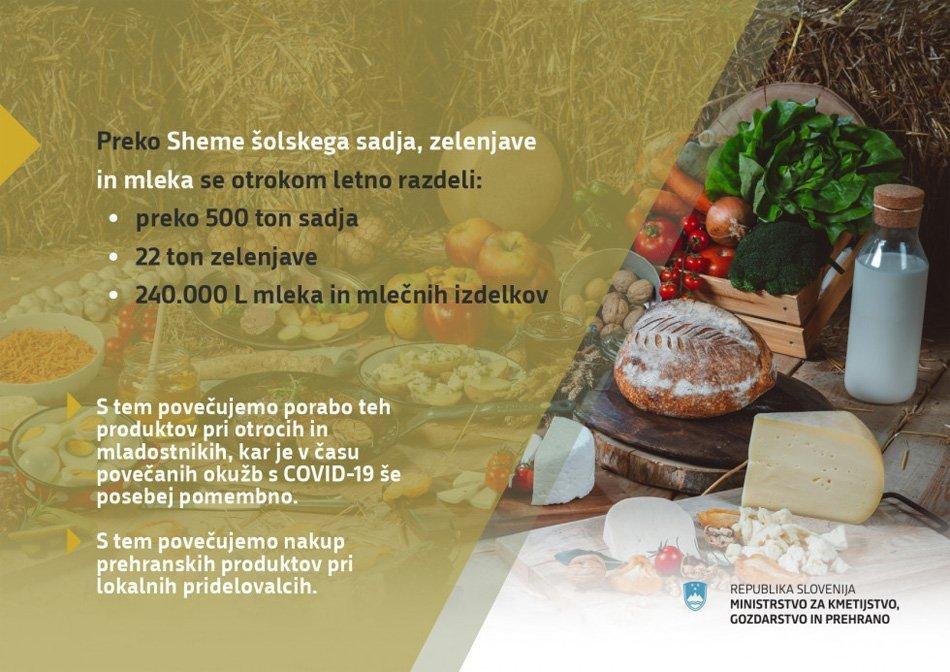 Grafika – Sheme šolskega sadja, zelenjave in mleka – plodovi in prehrambeni izdelki na mizi