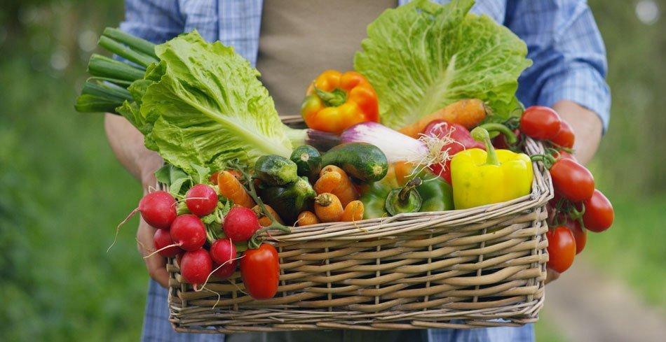 Mladi kmet, ki v košarici drži svežo zelenjavo