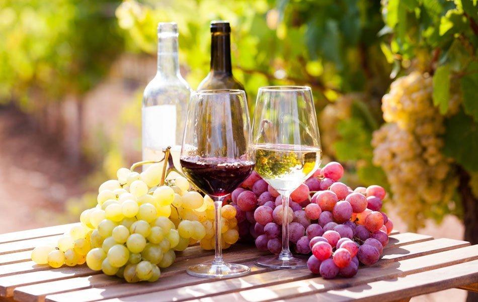 Vino in grozdje na mizi