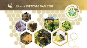 Svetovni dan čebel - grafika s čebelami