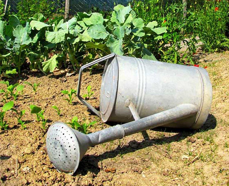 Kanta za zalivanje na suhi zemlji